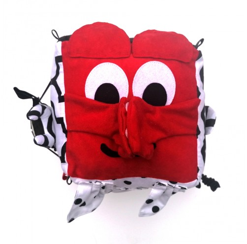 Sensorek Cube